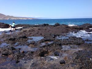 Lava formations in Punta Prieta