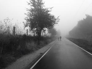 Foggy & rainy morning :-(